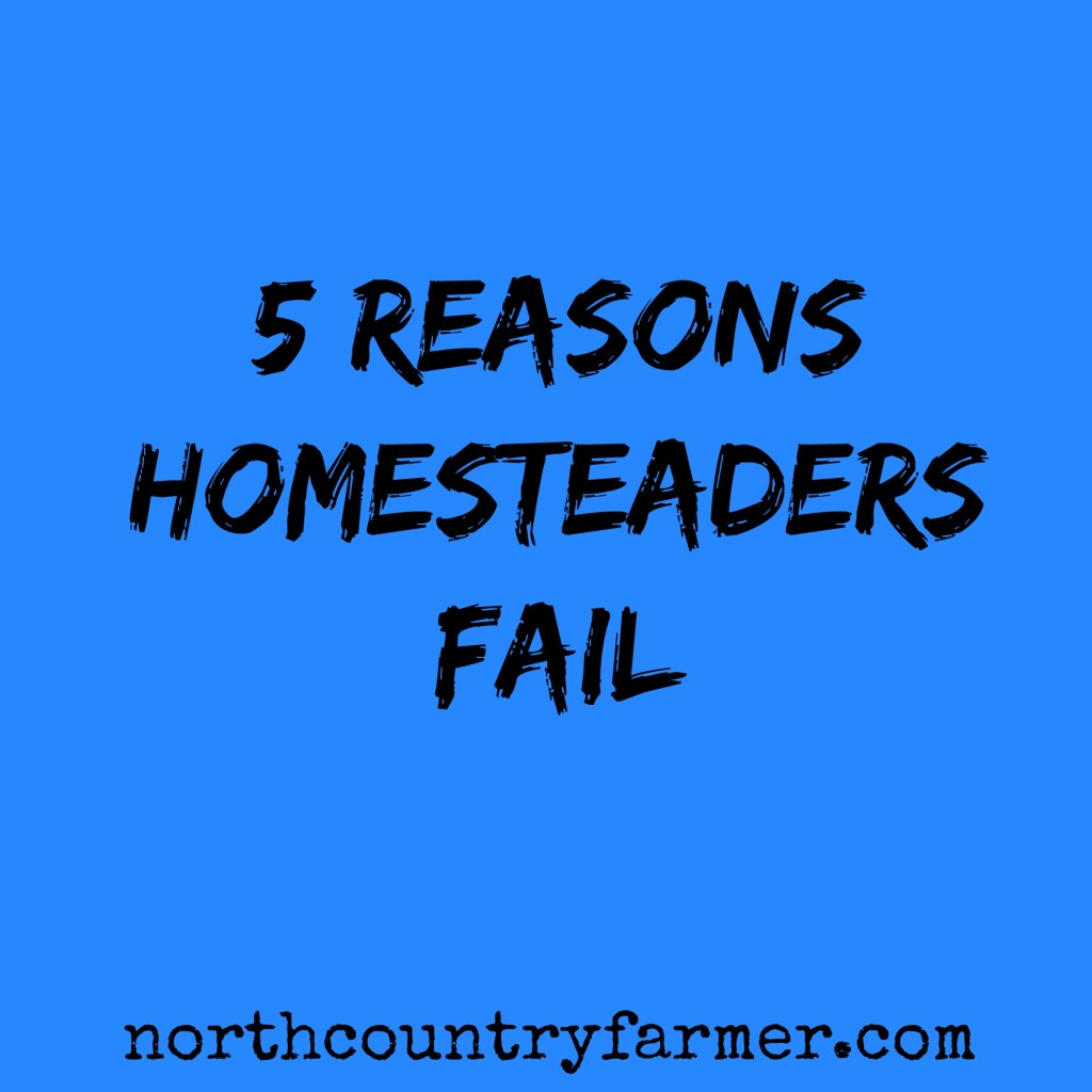 5 Reasons Homesteaders Fail