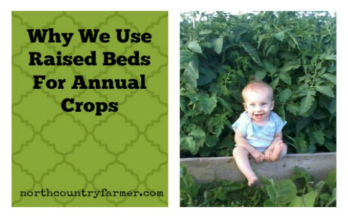 Why We Use Raised Beds-